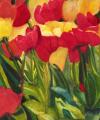 Wild Tulips
