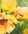 Original watercolor titled Sunflower Breeze by Kay Allenbaugh