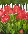 Singing Tulips
